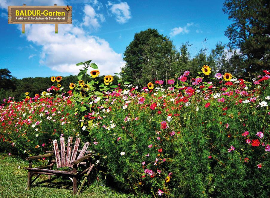 Baldur Garten Rabatt Coupon